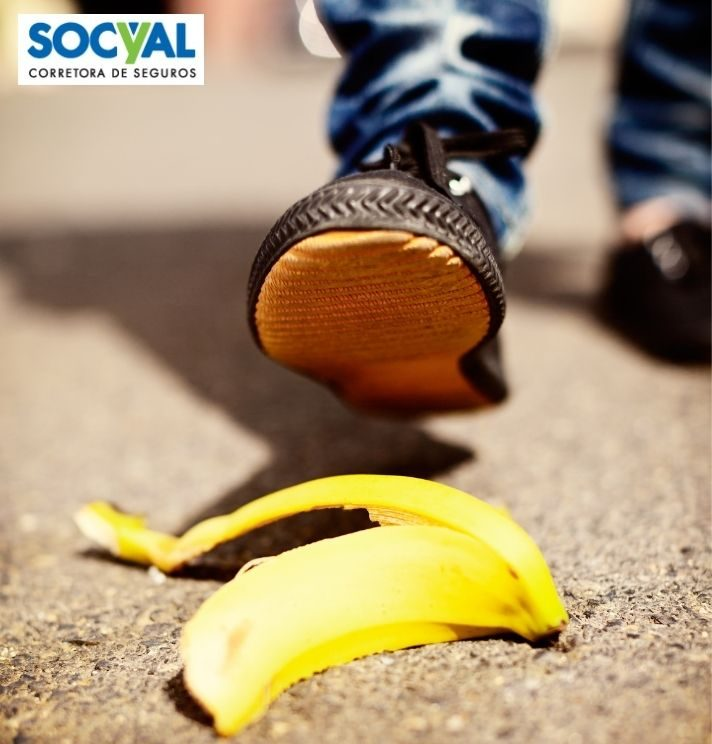 Socyal-segurodeVida-2
